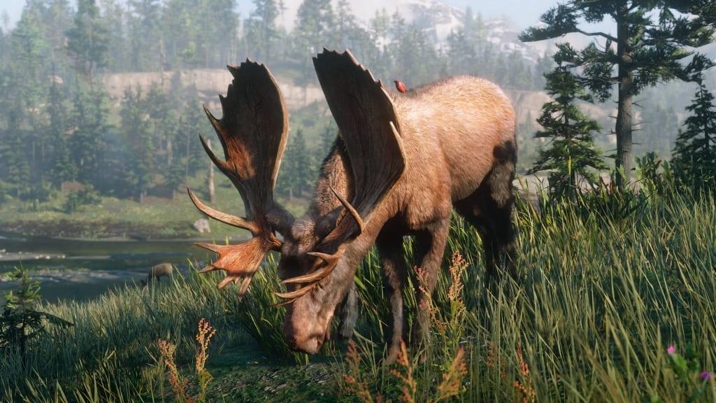 rdr2_wildlife (24)